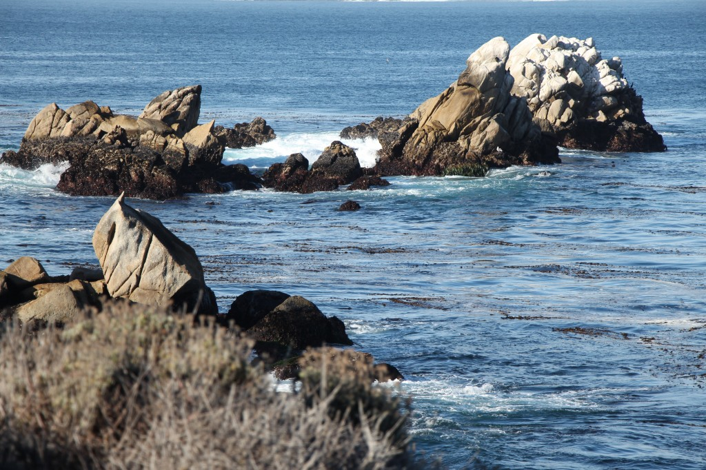 Point-Lobos-Water