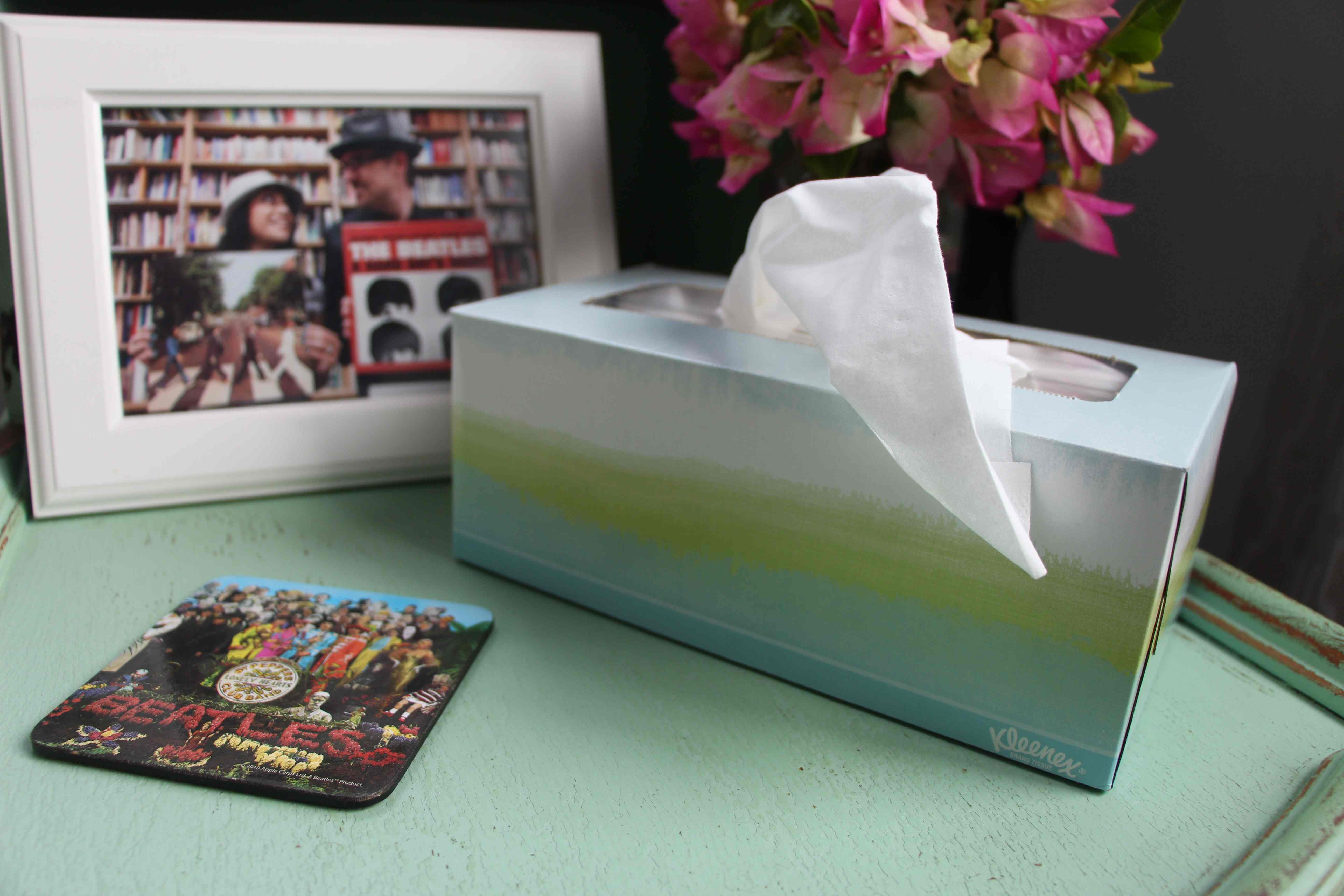 Style your heart out with kleenex shugar love for Room in your heart living in a box